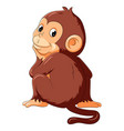 a monkey thinking and smile