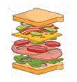 sandwich concept ingredients bread salad tomato vector image