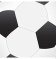 Soccer ball texture vector image