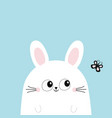 white bunny rabbit looking at butterfly funny vector image