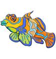 mandarin fish cartoon character vector image vector image