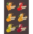 Set fruits and glass with fresh juice vector image