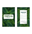 tropic leaves card realistic detailed 3d vector image vector image