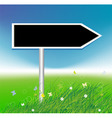 arrow on green field background vector image