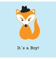 Baby boy fox arrival announcement birth card vector image vector image