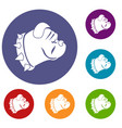bulldog dog icons set vector image vector image