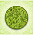 bunches of the green grapes with dew drops vector image