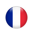 france flag on button vector image