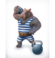Hippo circus athlete funny character mesh vector image vector image