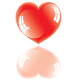 shiny heart with reflection vector image vector image