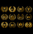 beautiful gold wreathes set vector image