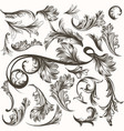 Collection antique hand drawn ornaments
