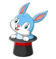 cute cartoon rabbit in magic hat vector image