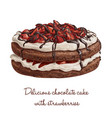 delicious chocolate cake with strawberries vector image vector image
