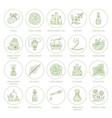 essential oils aromatherapy line icons set vector image vector image