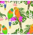 seamless texture sun conure parrots vector image vector image