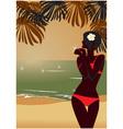 sunset tropic beach vector image
