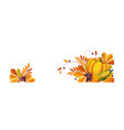 thanksgiving banner with autumn colorful leaves vector image vector image