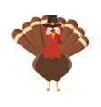 Thanksgiving turkey character icon vector image