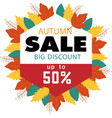autumn sale big discount up to 50 image vector image