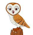 Cartoon barn owl isolated on white background vector image vector image