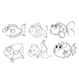 Different fishes in a doodle design vector image vector image