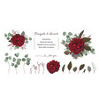 floral bouquet design with garden red roses leaf vector image vector image