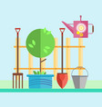 garden fence tree in a pot a seedling vector image vector image