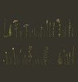 hand drawn herbal and wild grass elements clip art vector image vector image