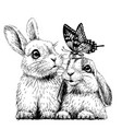 little rabbits with a butterfly vector image vector image