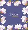 old border made beautiful magnolia flowers vector image