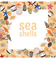 sea shells background with square frame vector image vector image