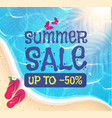summer sale background sunnu beach warm sea vector image