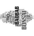 baobab bonsai text word cloud concept vector image vector image