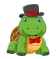 cute turtle using hat with good posing vector image vector image
