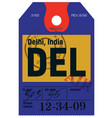 delhi airline tag vector image