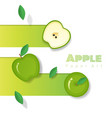fresh apple fruit background in paper art style vector image vector image