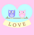 owls in love background vector image vector image