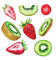 qiwi and strawberry set half and slices vector image