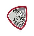 Rhinoceros Head Side Shield vector image vector image