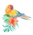 tropical birds isolated on white background palm vector image
