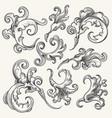 baroque swirl design element set vector image