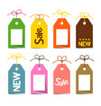 tags with strings labels with strings isolated on vector image