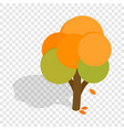 autumn tree isometric icon vector image vector image