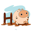 Cartoons Alphabet - Letter H with funny Hog vector image vector image