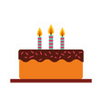 delicious cake brithday with candles vector image vector image