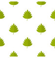 green hawthorn leaf pattern seamless vector image vector image