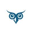 owl bird logo template vector image vector image