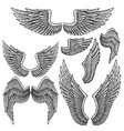 set monochrome bird wings different shape in vector image vector image
