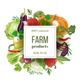 Set of fresh vegetables with squared banner vector image